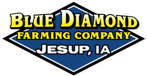 BDFC Logo Official