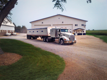 A grain semi pulling out of the home farm.