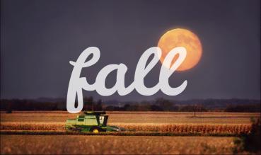 fall edit final