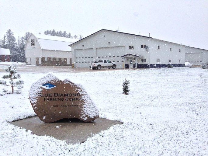 Winter at the BDFC home farm.