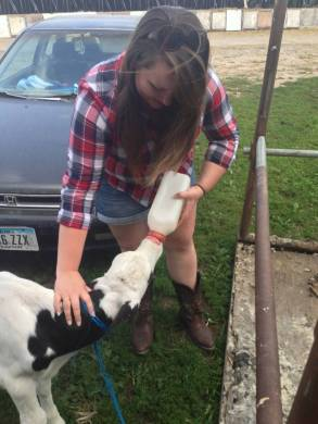 Lauren feeding a calf on an Iowa farm.